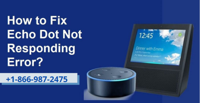 Echo dot not responding